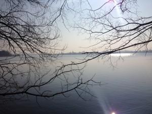 Blick auf Werder, Havel